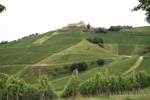 Blick auf das Schloss Staufenberg
