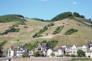 Weinregion Rheingau Höllenberg Assmannshausen
