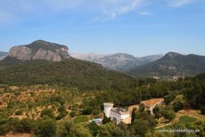 Blick vom Weinberg von Castell Miquel