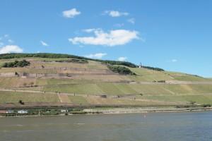 Rheingau Rüdesheimer Berg