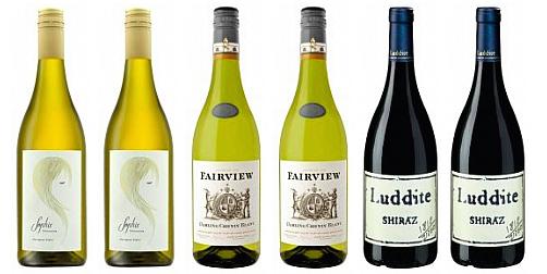 Weinpaket Südafrika
