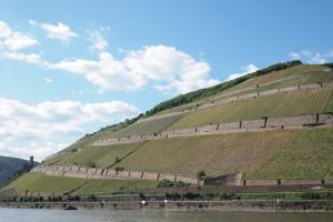 Rüdesheimer Berg Schlossberg Rheingau