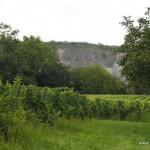 Vulkangestein prägt den Kaiserstuhl