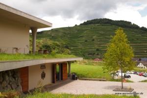 Blick auf die Terassen vom Weingut Franz Keller