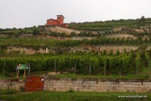 Weinlage in Freyburg