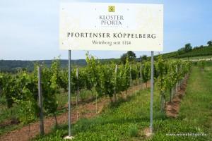 Weinlage Pfortenser Köppelberg