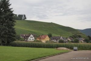 Blick auf Durbach und Weinberge