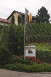 Weingut Andreas Laible