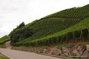 Weinlage Plauelrein in Durbach