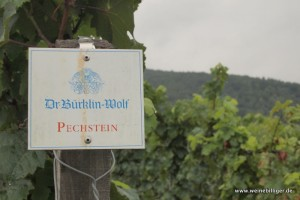 Weinlage Pechstein