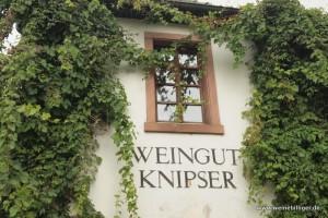 Weingut Knipser in Laumersheim
