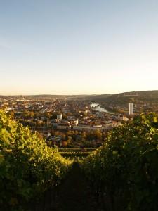 Blick von den Weinbergen auf Würzburg
