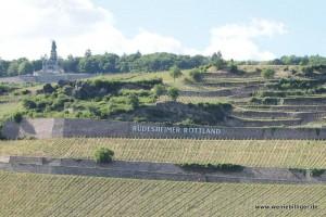 Weinlage Rüdesheimer Rottland