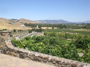 Weingut in Sonoma