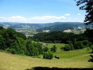Blick über den Schwarzwald