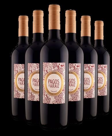 Pagos de Araiz Crianza DO Navarra 2011 - jetzt günstig im Angebot!