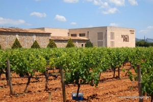 Das Weingut Macia Batle auf Mallorca
