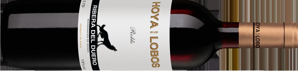 Hoya de los Lobos 2013